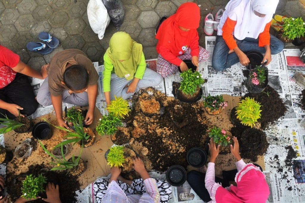 Bertanam di Lahan Sempit, Bangun Ketahanan Pangan Rumah Tangga 2